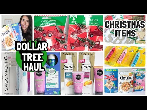 DOLLAR TREE HAUL 2019 NEW FINDS | CHRISTMAS | RED TRUCKS | NAME BRAND BEAUTY