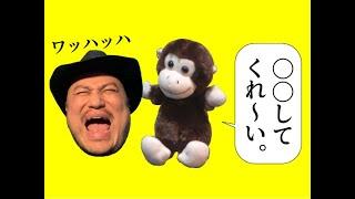 ザコシの動画でポン! 「やっぱりライスに○○してくれ~いって実際言ってもらってどれが一番おもしれえか決めるしかねえだろ!?」