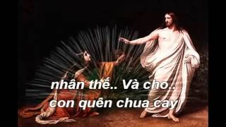 Karaoke Cho Con Quên Đi:Tác Giă Phạm Vinh Sơn