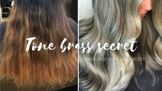 How To Tone Hair (CHEAP EASY SECRET)