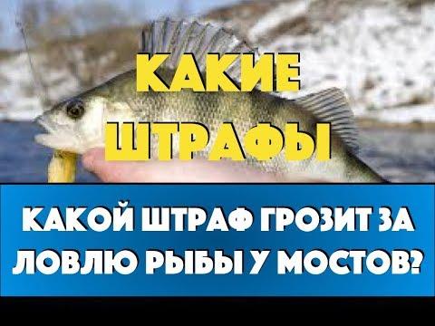 Какой штраф за ловлю рыбы у мостов?