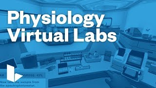 Labster Physiology Simulations