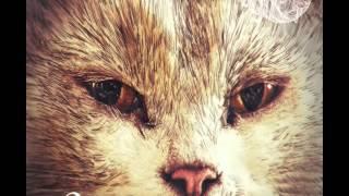 Betoko - Dance On My Feet (Original Mix) [Suara]