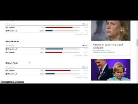 Louisiana 2014 Senate runoff