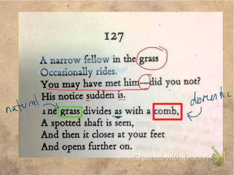 Dickinson Poem 127- A narrow fellow in the grass