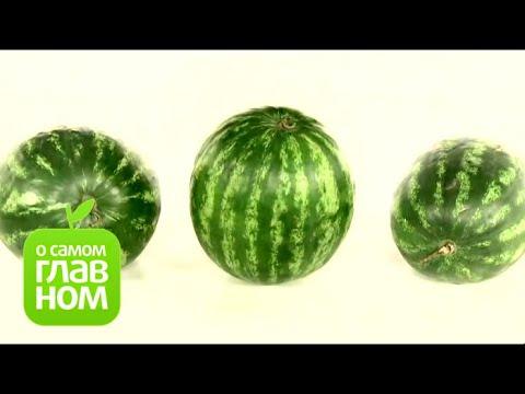 Почему болит желудок после еды арбуза