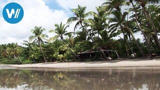 "Grenada - Insel in der Karibik, HD (Reisedoku aus der Reihe ""Caribbean Moments"")"