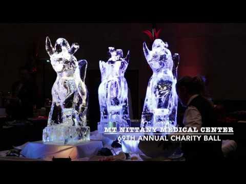 Mt Nittany Charity Ball 2017