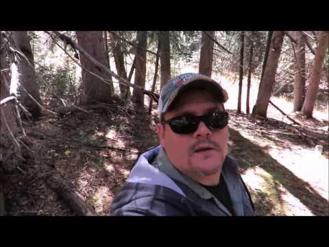 Bigfoot Expedition Grand Mesa Carson Lake Colorado
