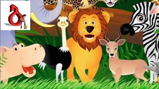 ვისწავლოთ ცხოველების დასახელებები და თან ავაწყოთ ფაზლები
