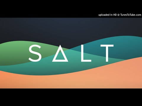What is SALT? - The Future Of Lending - 161