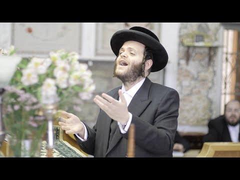 זאנוויל ויינברגר & מקהלת מלכות - פרקי אבות - ווקאלי | Malchus Choir & Zanvil Weinberger - Vocal