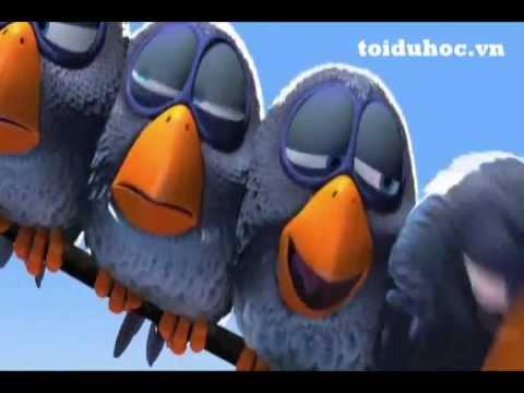 Funny Bird - Những chú chim vui nhộn