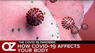 What Happens Inside The Body When You Get Coronavirus?