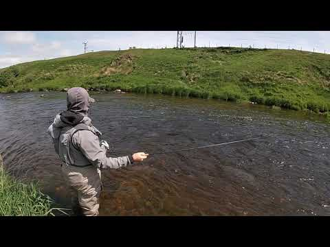 River Clyde Fishing June 11th
