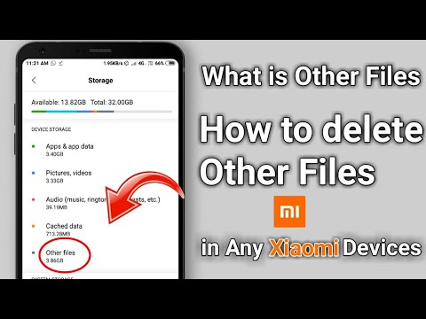 Full Details of OTHER FILES in storage option | how to clean/delete & what is Other files