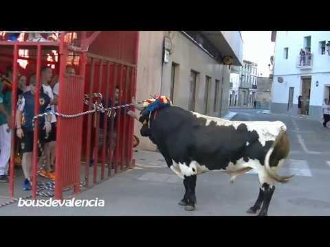 BOUS AL CARRER - TURÍS (V) 2018 - TORO EN CUERDA DE FERNANDO MACHANCOSES 17-6-2018