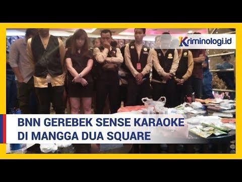 Berita Terbaru: Badan Narkotika Nasional Gerebek di Sense Karaoke Mangga Dua Jakarta Utara