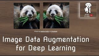 Image Data Augmentation for Deep Learning
