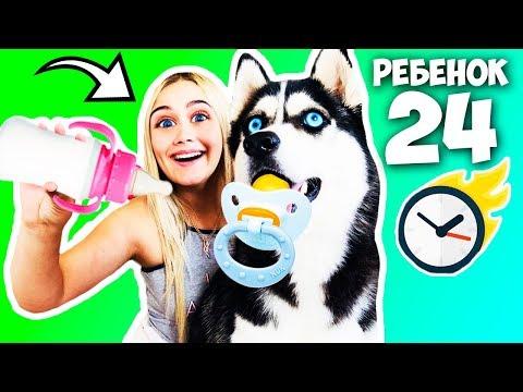 Один день моя собака мой ребенок! Нянчусь с собакой как с ребенком 24 часа челлендж! Луна ребенок!