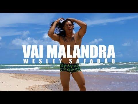 Vai Malandra - Anitta Versão Wesley Safadão Coreografia  Irtylo Santos