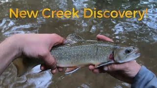 Fishing Small Tributary For Finicky Trout