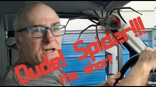 Horror Short:  Dude! Spider!!!