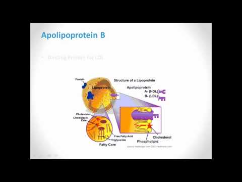 WellnessFX Biomarker Series: Apolipoprotein B