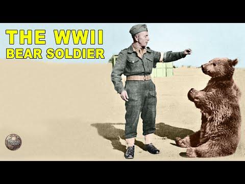 The Story Of Wojtek | The Polish Military Bear