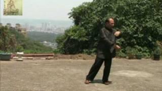Tai Chi 太極拳老架108式 何正吉 老師示範 3 -1
