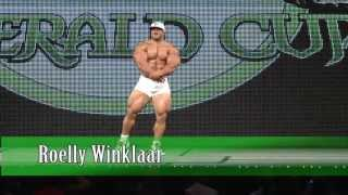Roelly Winklaar guest poses at the 2013 Emerald Cup.