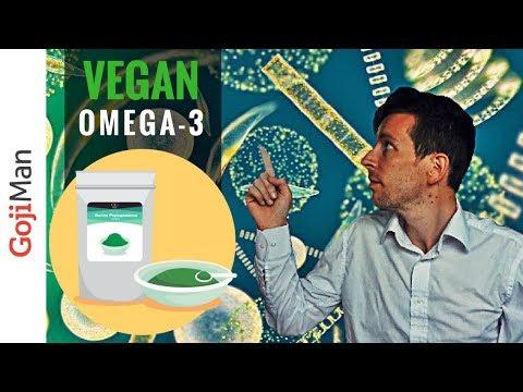 Your Key To Success: Vegan Omega 3