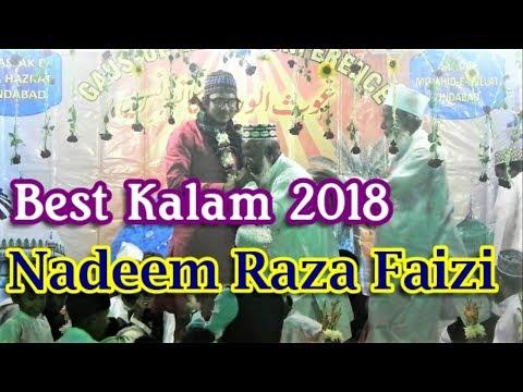 Nadeem Raza Faizi || New Best Kalam 2018 || Gaus-Ul-Wara Conference