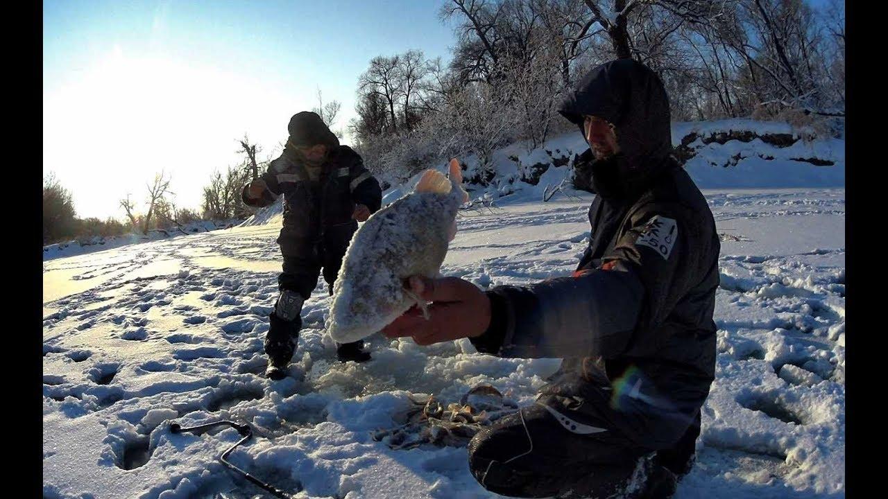 Видео ловля крупный окунь зимой