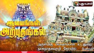Naganathaswami Temple, Peraiyur | Aalayangal Arputhangal | 18/03/2016 | Puthuyugam TV