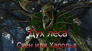 Ведьмак 3   Дух леса. Как поступить?