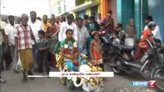 Dog takes bride for ride in dog cart near Dharmapuri   Tamil Nadu   News7 Tamil