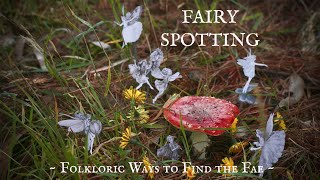 The October Series - 2: How To See Fairies! ☆ Hey all you wonderful...