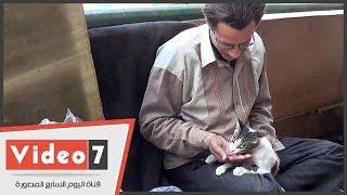 بالفيديو..بائع متجول يرعى قطة بالشارع: