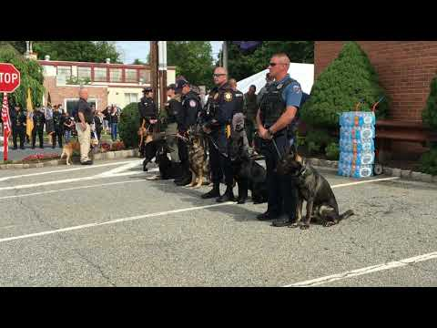 Hundreds of Hackettstown residents and local police officers attended Monday's procession and memorial service for K-9 Jada, which was captured in a touching video.