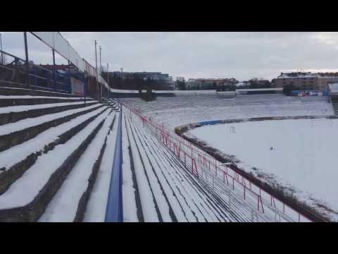 Lužánky v zimě (leden 2017)