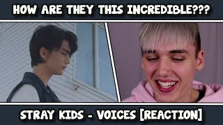 "Stray Kids ""Voices"" Performance Video REACTION [K I N G S]"
