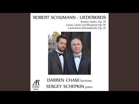 Liederkreis - Twelve Songs by Joseph von Eichendorff, Op. 39: IX. Wehmut