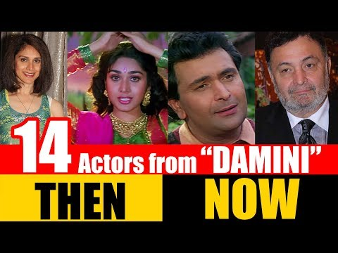 """14 Bollywood Actors from """"DAMINI"""" 1993 
