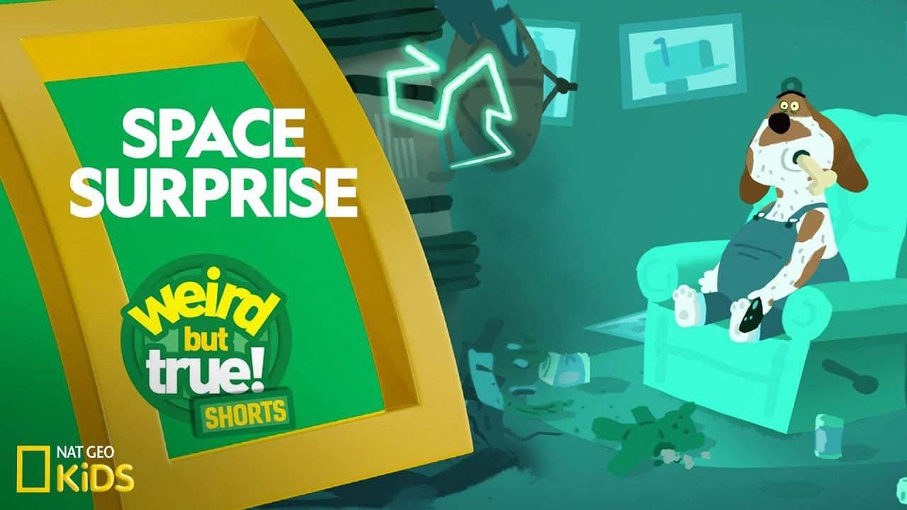 Space Surprise | Weird But True! Shorts