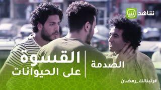 الصدمة | شاب يعذب كلب في الشارع والناس في مصر تتدخل