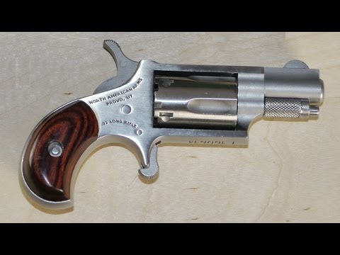 North American Arms NAA .22lr Mini-revolver Test And Review PART 1