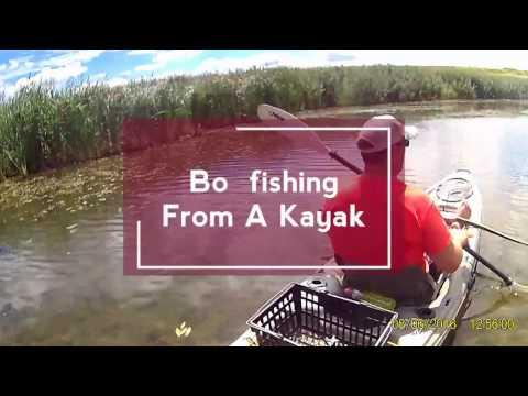 Bowfishing From A Kayak