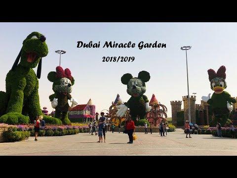 Dubai Miracle Garden 2018/2019   حديقة الزهور