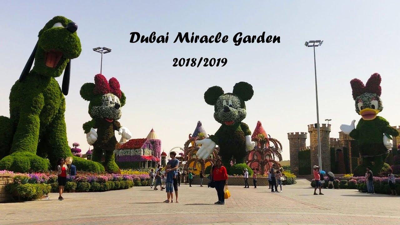 Dubai Miracle Garden 2018 2019 حديقة الزهور Youtube